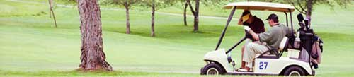 Golf Cart on the course